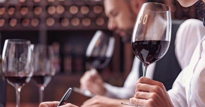 Startup lança degustação virtual de vinhos inédita no País