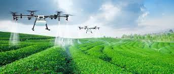 NovoAgro Ventures busca startups para inovar agronegócio