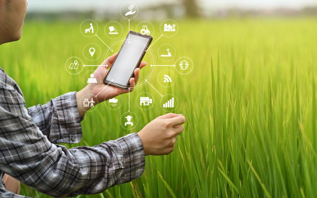 Transformação digital é essencial para usinas e agroindústrias