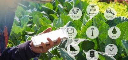 Agtechs ganham espaço no agronegócio pós-pandemia
